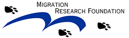 Migration Research Foundation